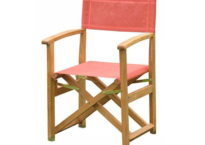 Teak Outdoor Director Chair